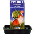 Травка для кошек (лоток с питательным субстратом) в красочной упаковке