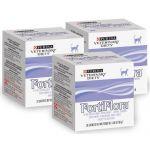 Кормовая добавка для повышения иммунитета у кошек в гранулах, 30 пакетиков по 1 гр